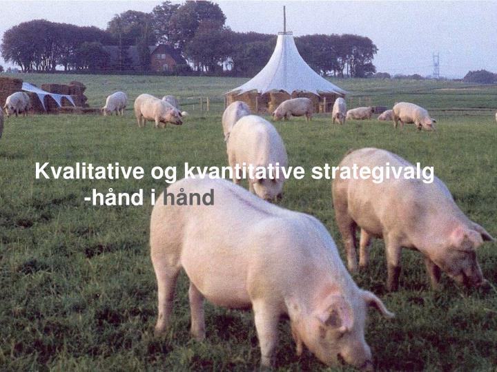 Kvalitative og kvantitative strategivalg