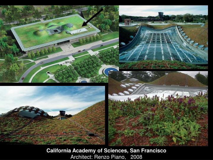 California Academy of Sciences, San Francisco