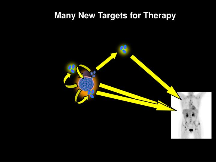 Many New Targets for Therapy
