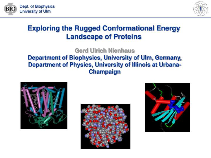 Exploring the Rugged Conformational Energy Landscape of Proteins