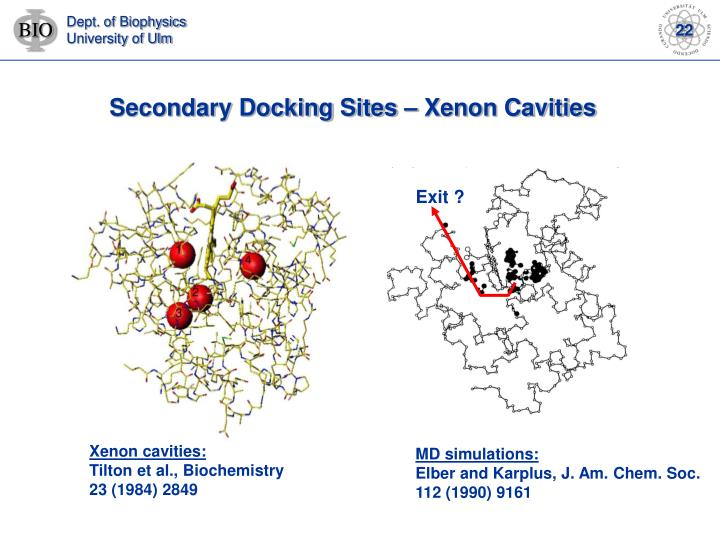 Secondary Docking Sites – Xenon Cavities