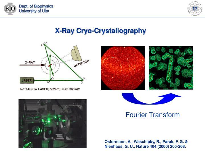 X-Ray Cryo-Crystallography