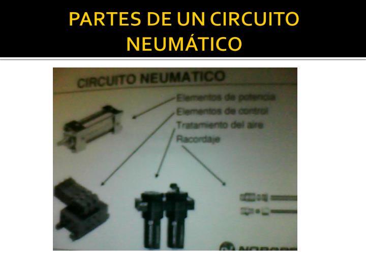PARTES DE UN CIRCUITO NEUMÁTICO