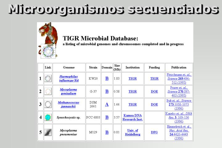 Microorganismos secuenciados