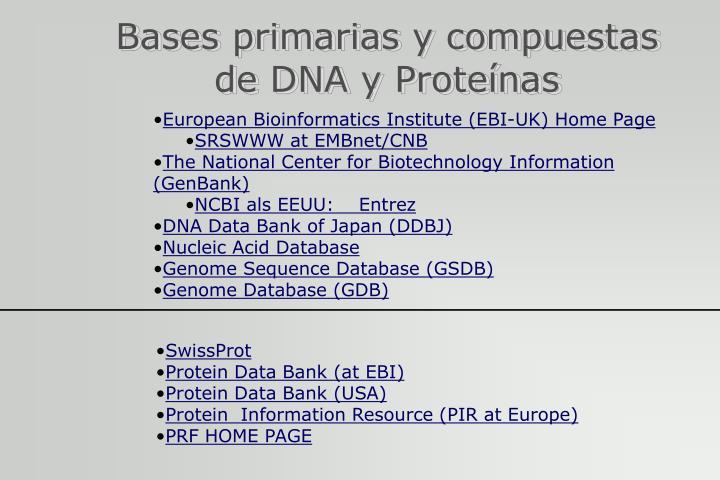 Bases primarias y compuestas de DNA y Proteínas