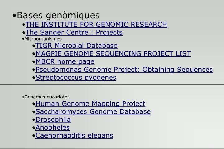 Bases genòmiques