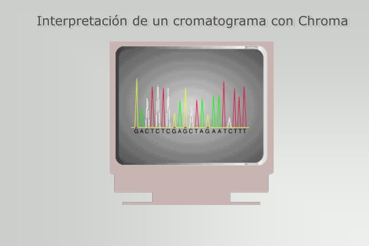 Interpretación de un cromatograma con Chroma