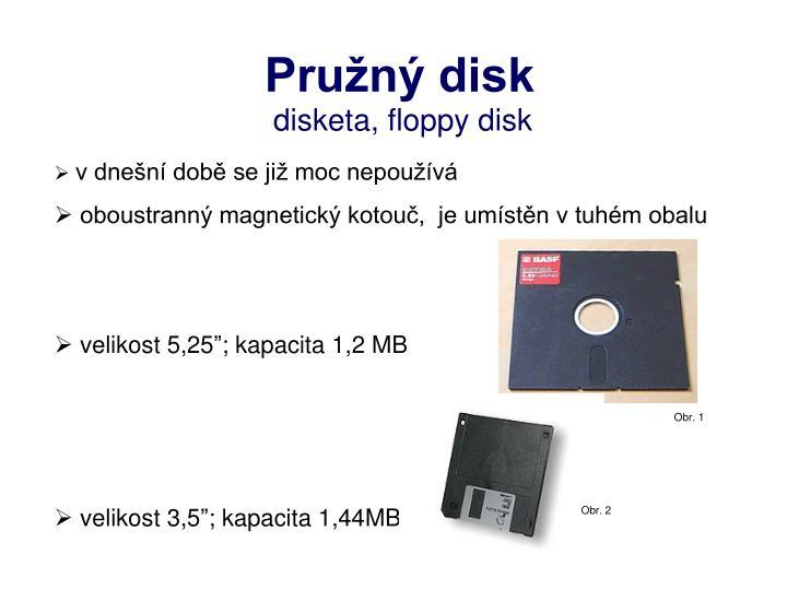 Pružný disk