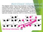matrilineal inheritance of property