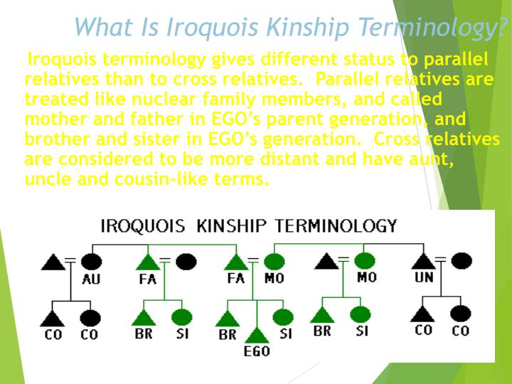 What Is Iroquois Kinship Terminology?