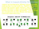 what is iroquois kinship terminology