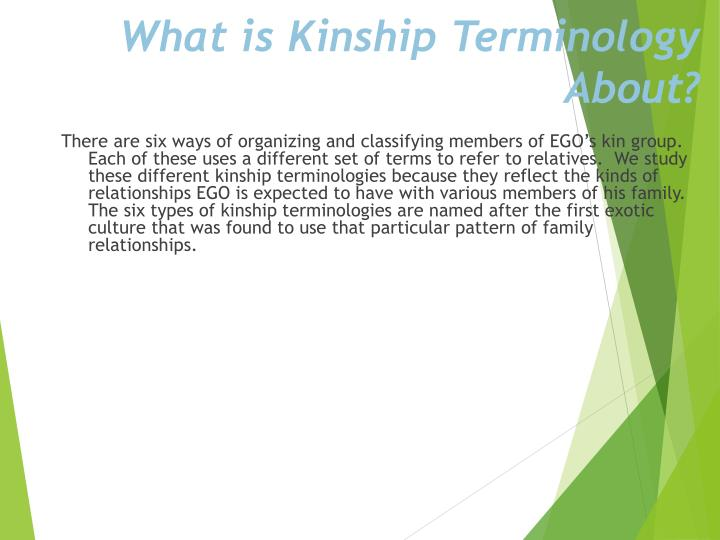 What is Kinship Terminology About?