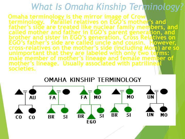 What Is Omaha Kinship Terminology?