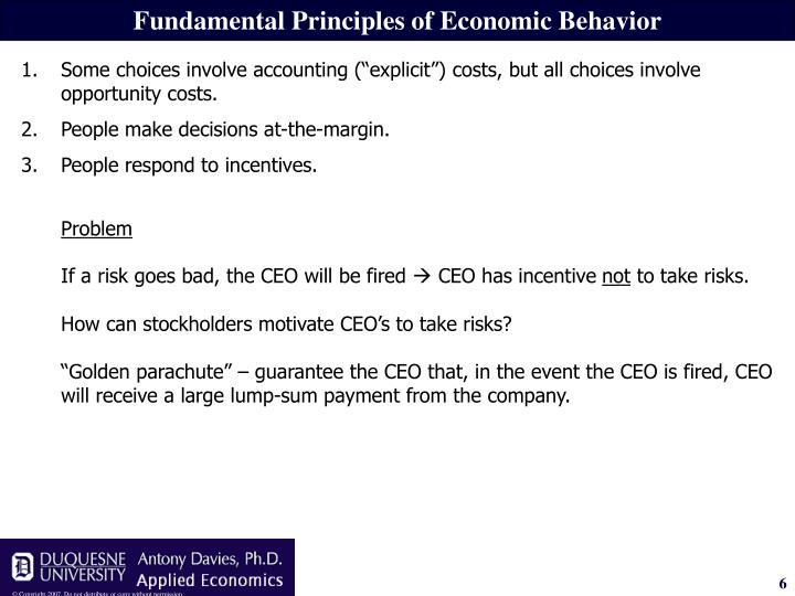 Fundamental Principles of Economic Behavior