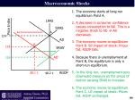 macroeconomic shocks