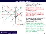 macroeconomic shocks1