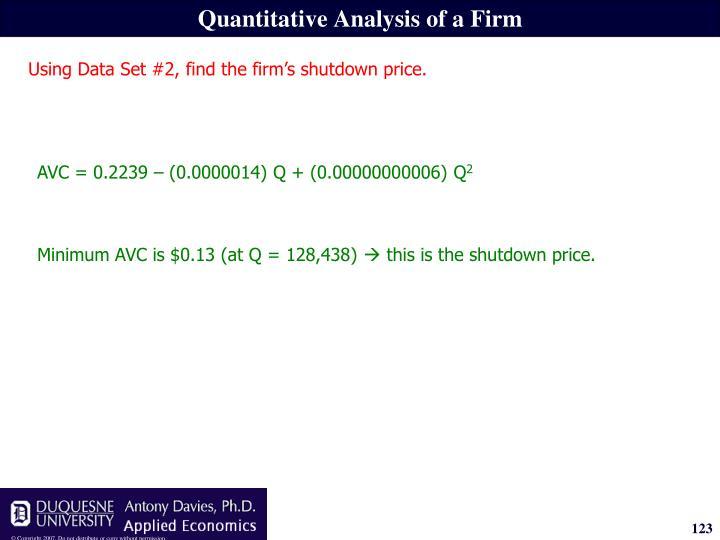 Quantitative Analysis of a Firm