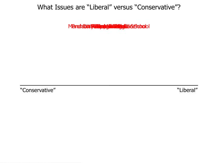 """What Issues are """"Liberal"""" versus """"Conservative""""?"""