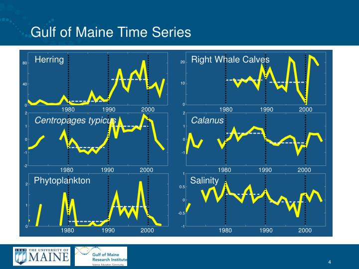 Gulf of Maine Time Series