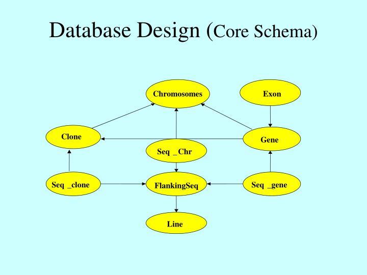 Database Design (