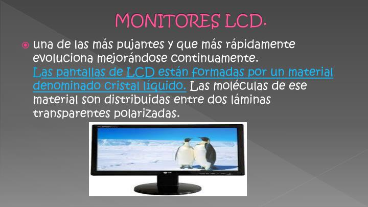 MONITORES LCD.