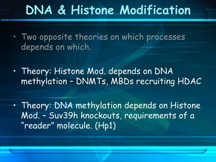 DNA & Histone Modification