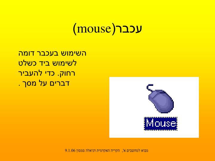 עכבר(