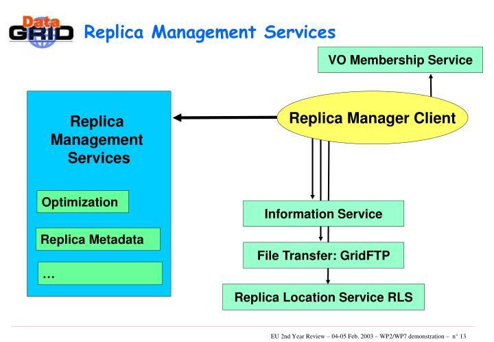 Replica Management Services