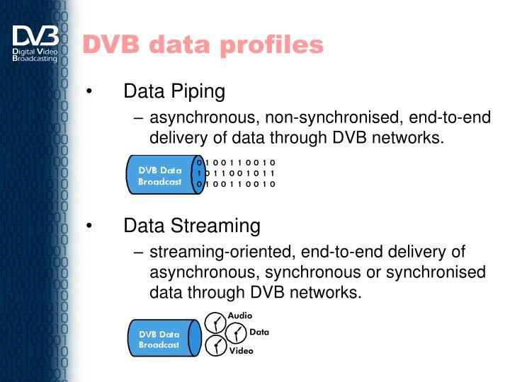 DVB data profiles