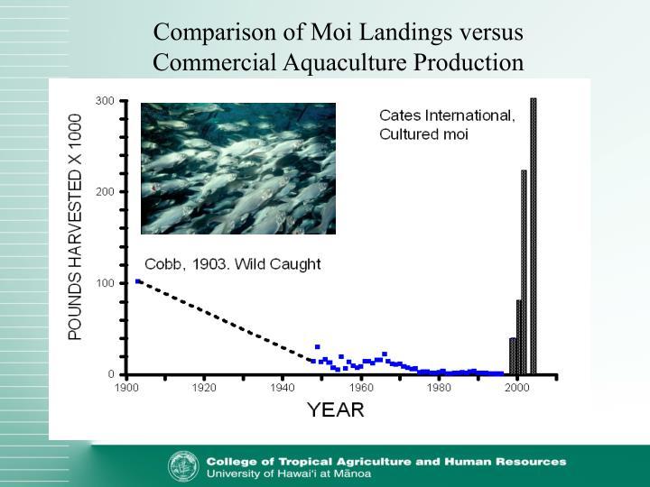 Comparison of Moi Landings versus Commercial Aquaculture Production