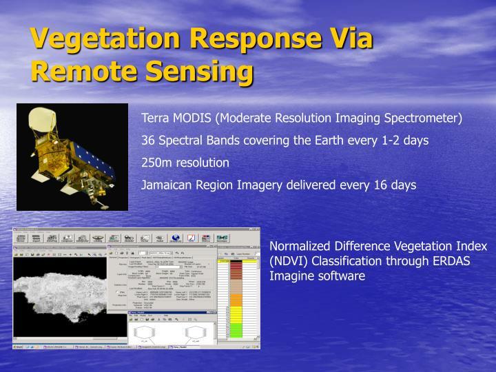 Vegetation Response Via Remote Sensing