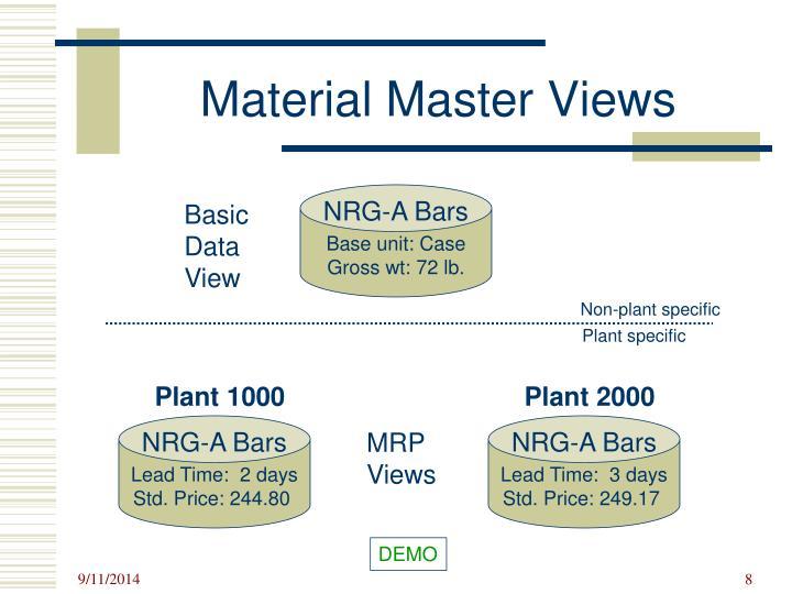 Material Master Views