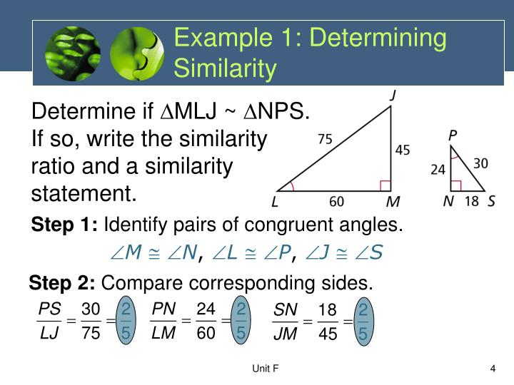 Example 1: Determining Similarity