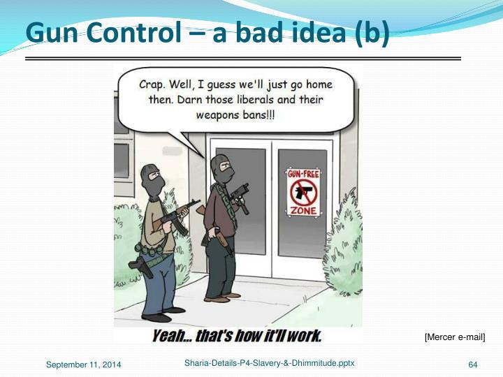 Gun Control – a bad idea (b)