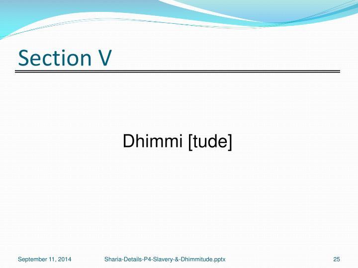 Section V