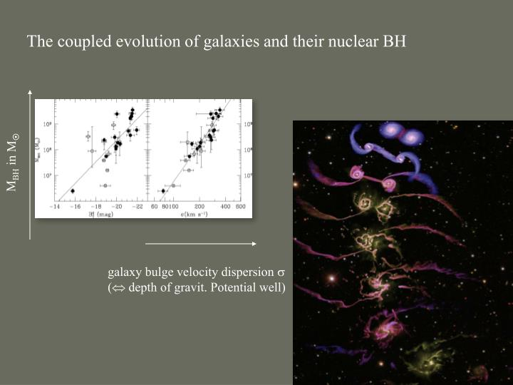 The coupled evolution of galaxies and their nuclear BH