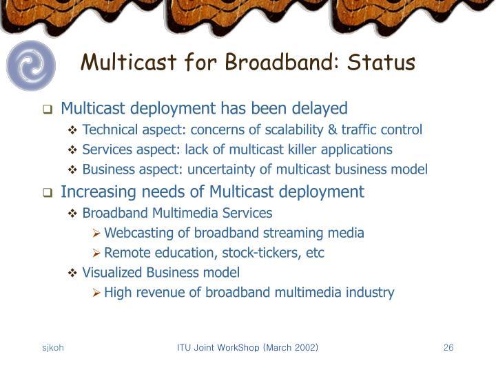 Multicast for Broadband: Status