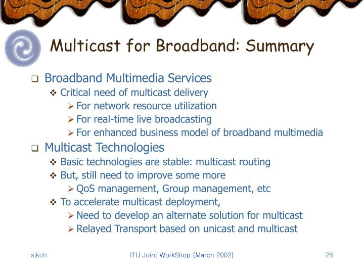 Multicast for Broadband: Summary