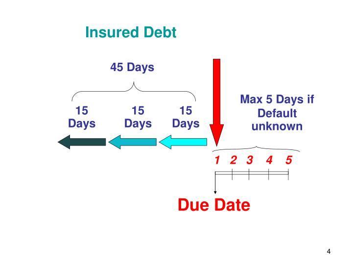 Insured Debt