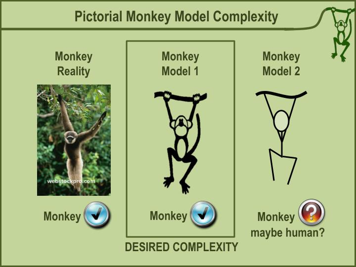 Pictorial Monkey Model Complexity