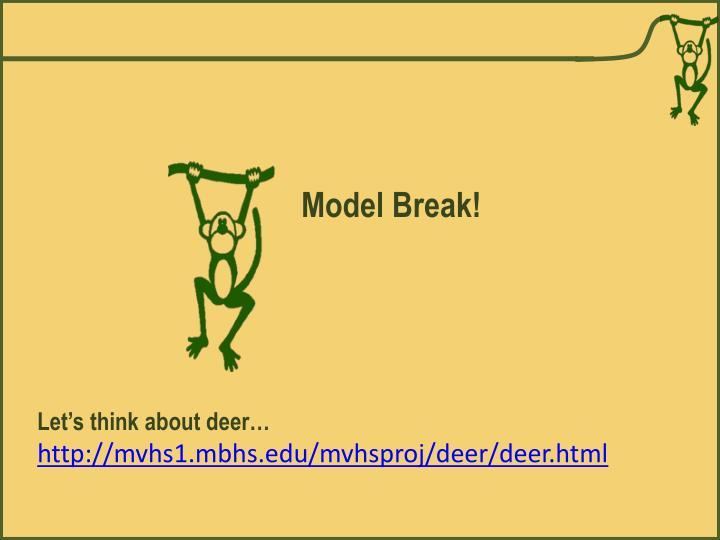 Model Break!