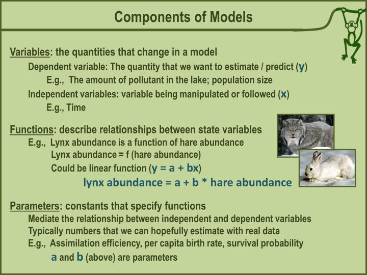 Components of Models