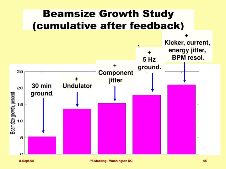 Beamsize Growth Study