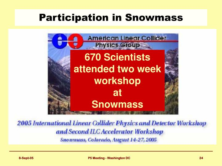 Participation in Snowmass