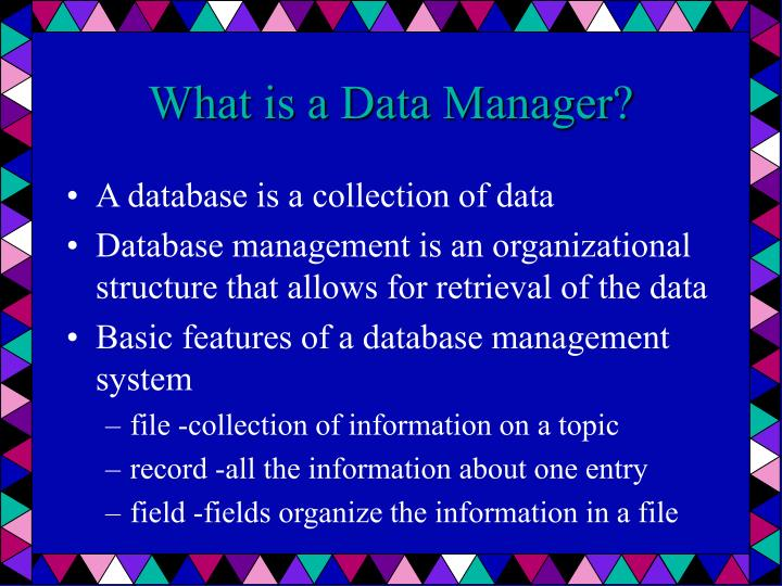 What is a Data Manager?