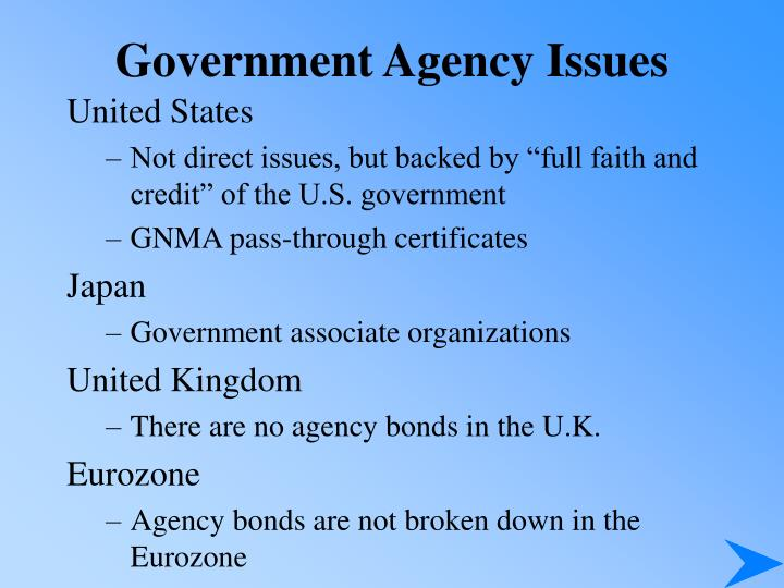 Government Agency Issues