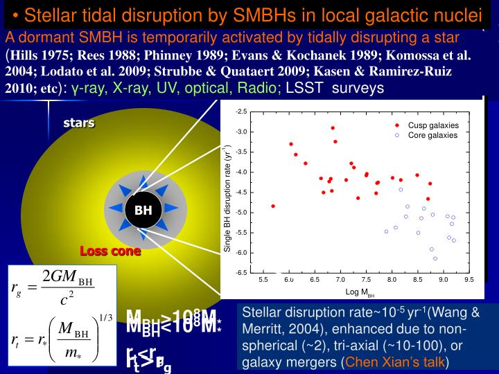 Stellar tidal disruption by SMBHs in local galactic nuclei