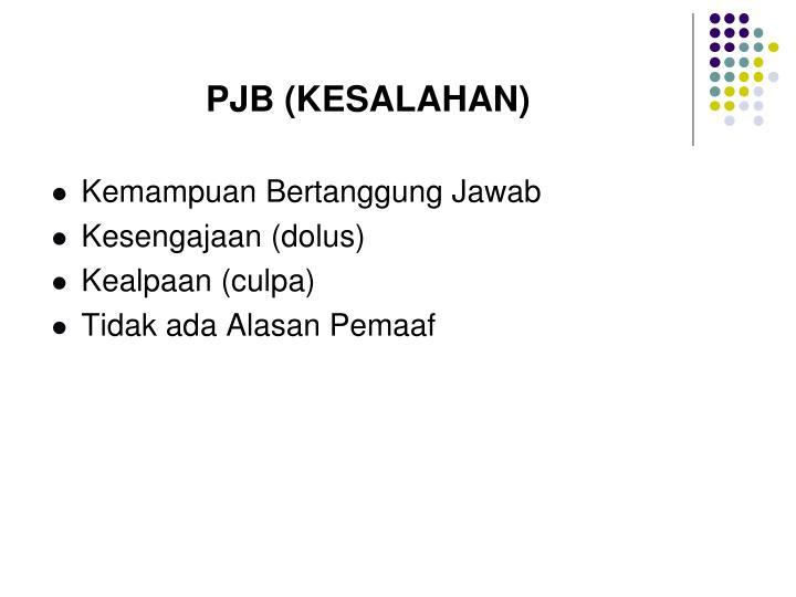 PJB (KESALAHAN)