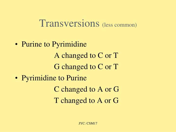 Transversions