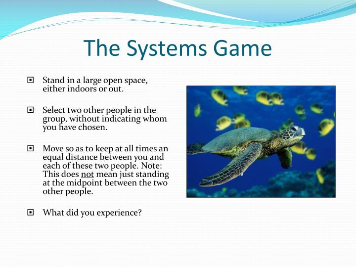 The Systems Game
